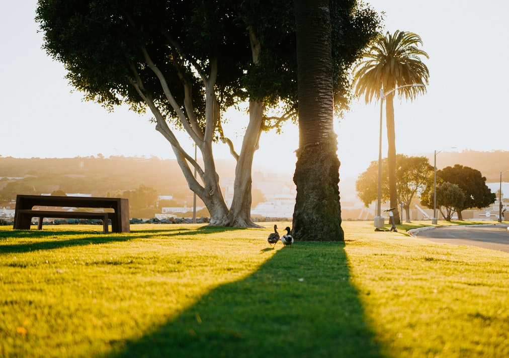 Parks And Recreational Outings
